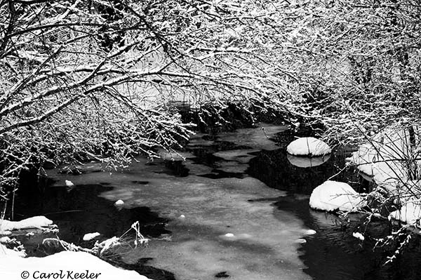 Snow over the Creek