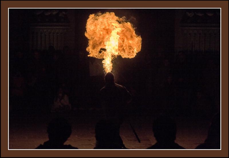 11 FUEGO - Fire