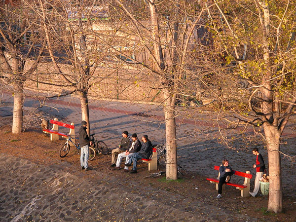 Budapest youth enjoying the last rays of sun for the day (Margit Island)
