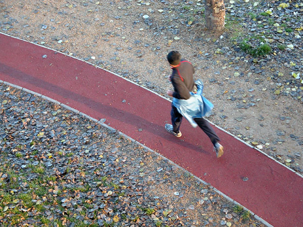 Keeping fit (Margit Island)