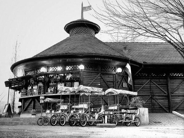 Recreational wheel carts for rental - Margit Island