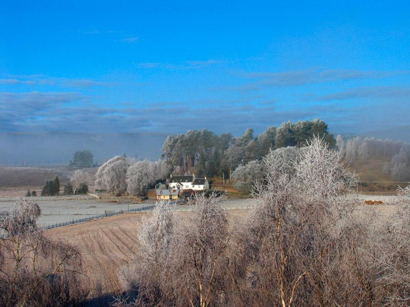 2nd February Frosty Morning