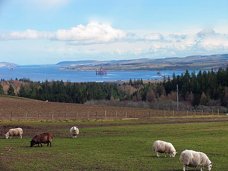 2nd April The Cromarty firth