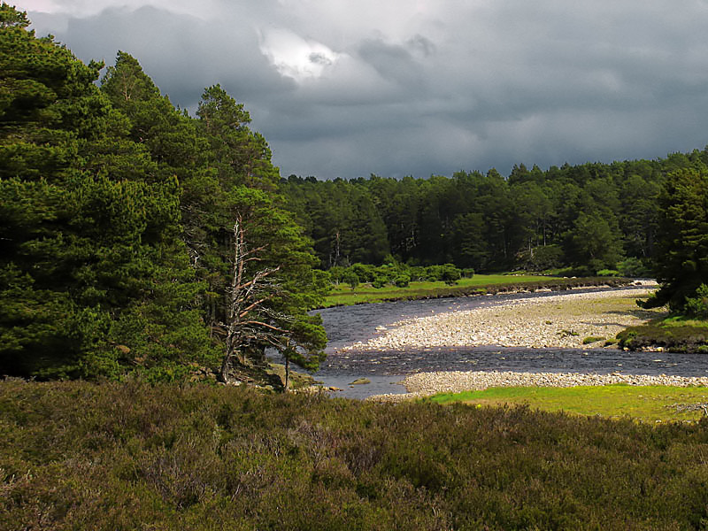 19th May River Dulnain