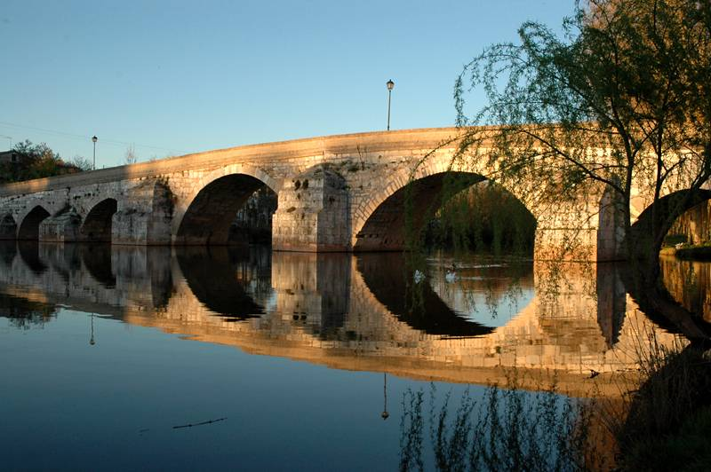 Bridge of Puentedura