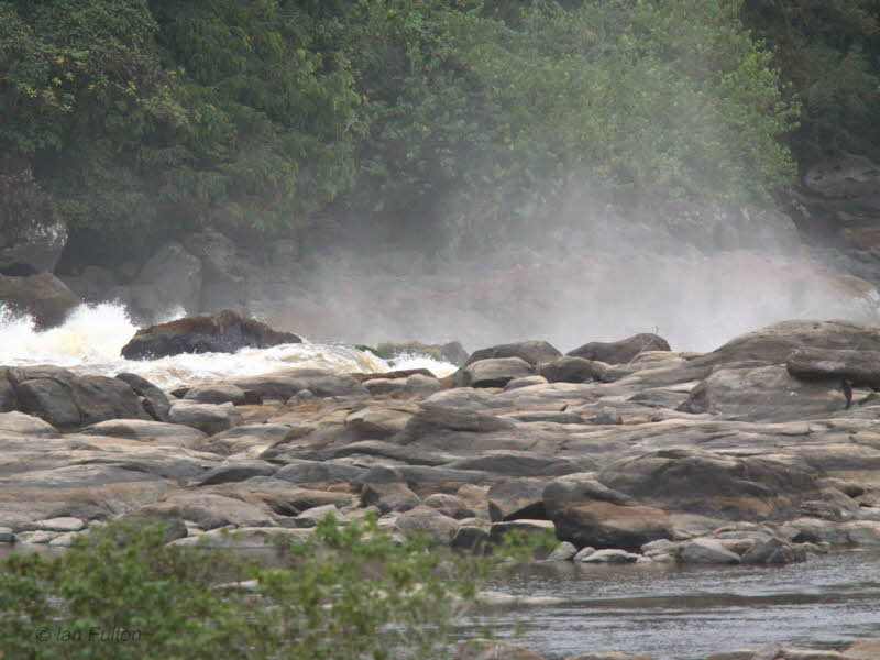 Rocks and rapids on the Ogoué River, Gabon