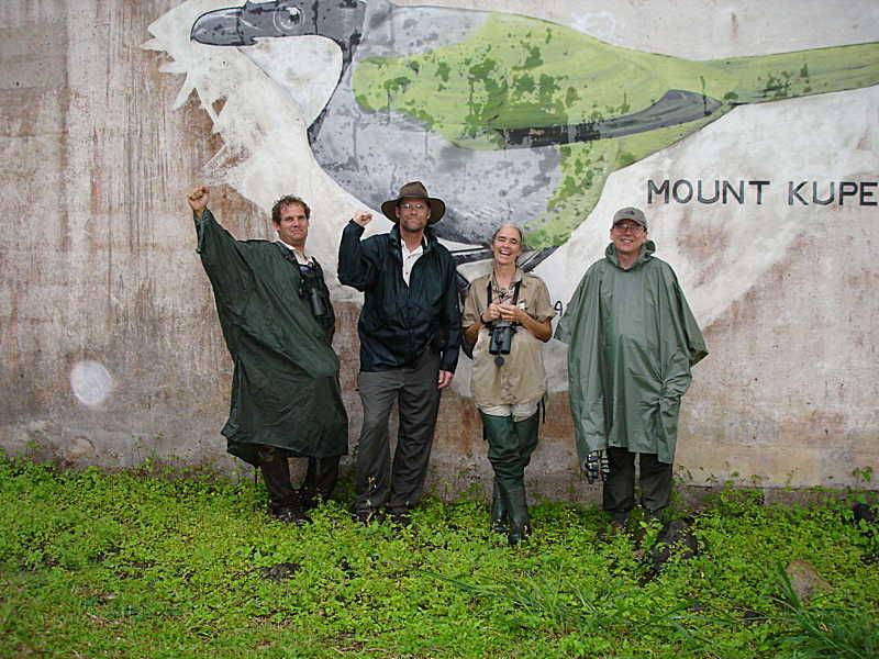 Mount Kupe Bush Shrike painting