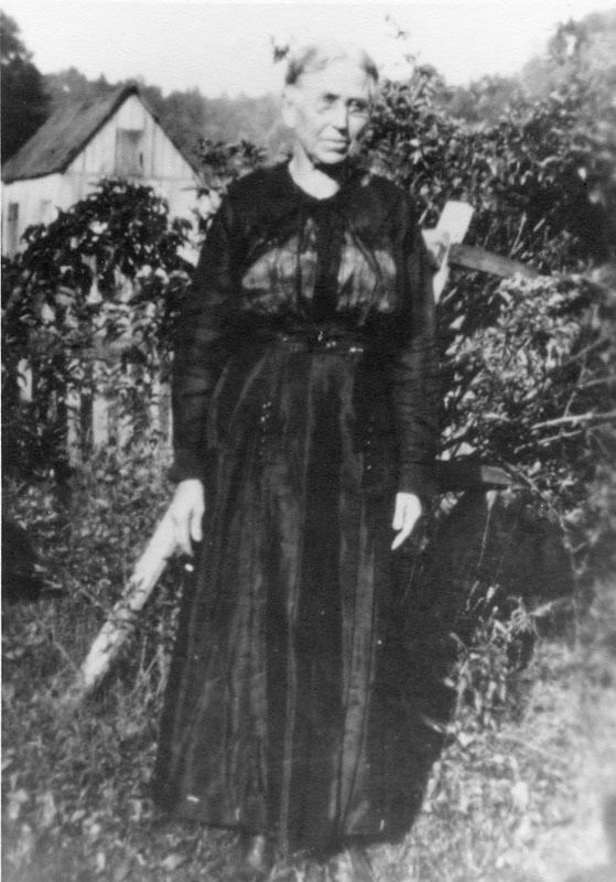 Louisa Arisba Godfrey (Helmick)