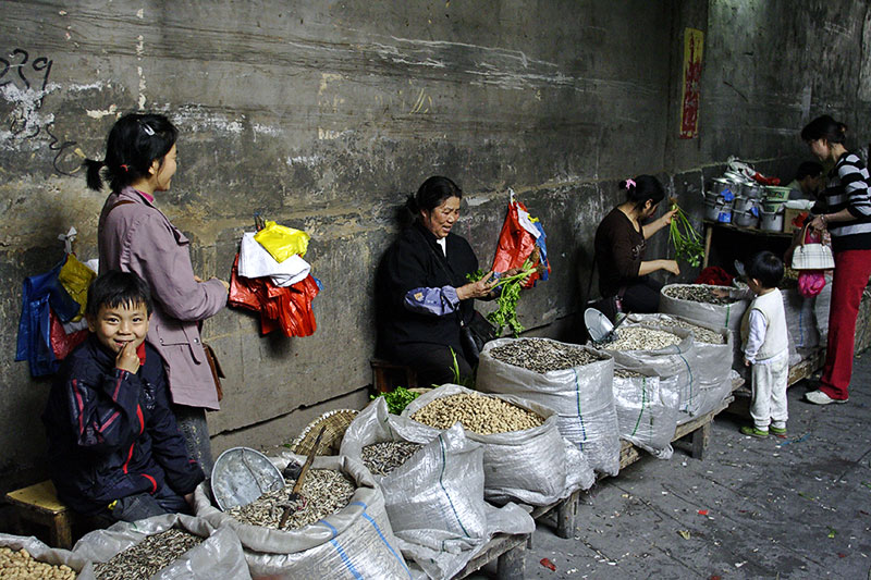 Indoor alley market for peanuts and sunflower seeds, Jishou City, China