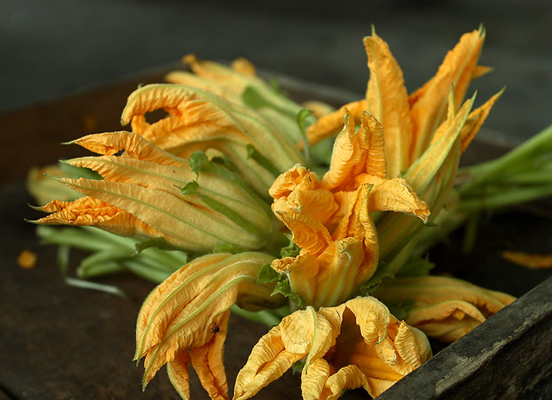 Squash blossoms in the market.