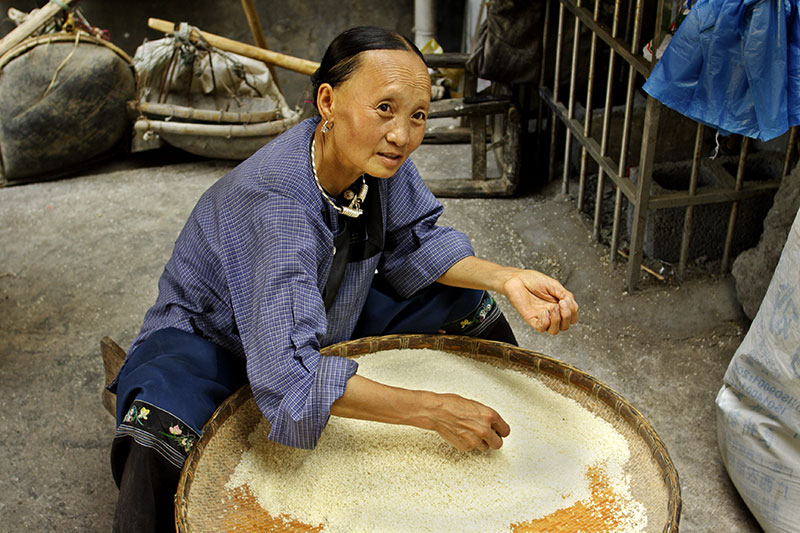 Hmong elder cleaning rice she has grown and sells.