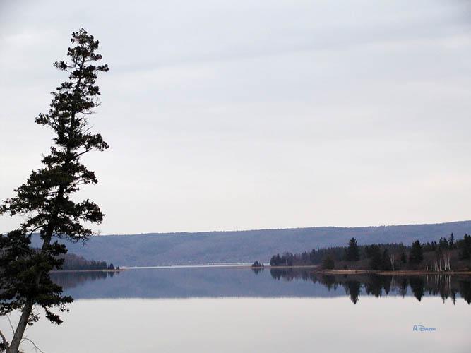 Calm Waters ~ BraDOr Lakes