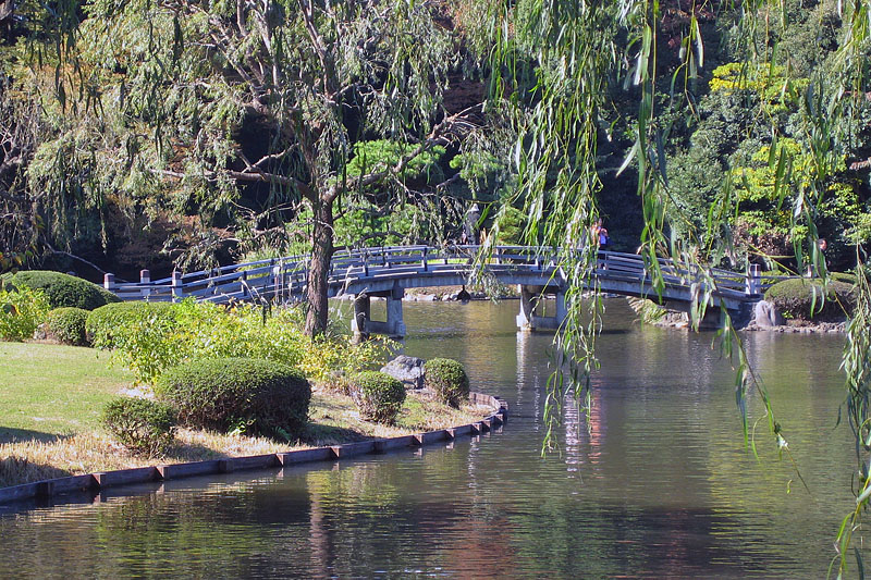 Pond, Bridge, and Willows