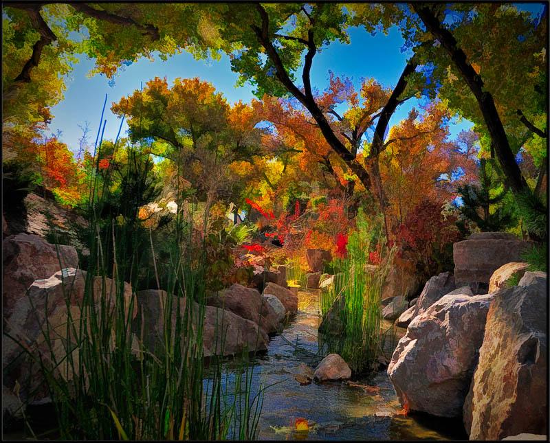 Japanese Garden Color Color