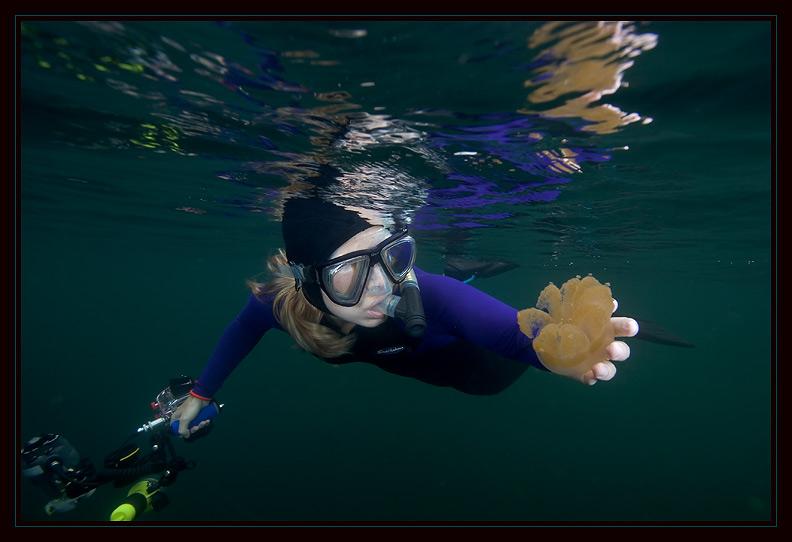 Susie enjoying Jellyfish Lake a bit too much