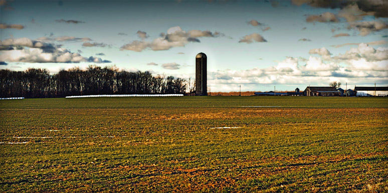 Early Spring, Lawrence County