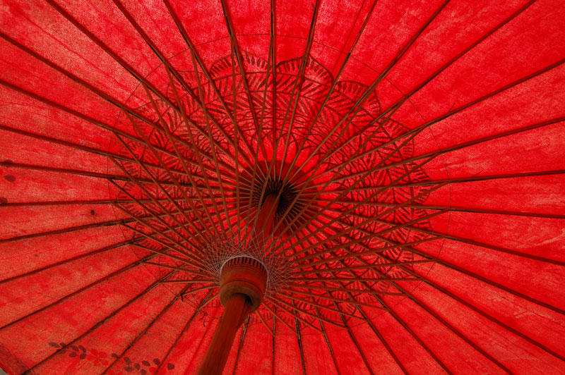 Japanese Umbrella 2