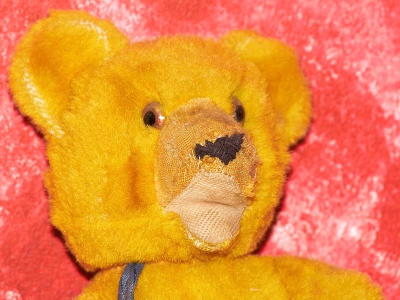 2009-10-24 My old teddy