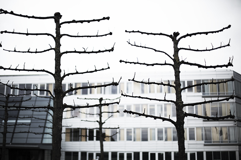 Memorial of war victims (of corporate wars)  ***NEW***