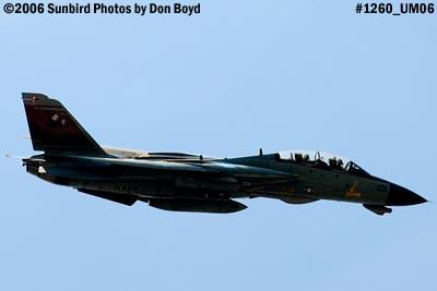 USN Grumman F-14D-170-GR Tomcat #164603 fly-by military aviation air show stock photo #1260