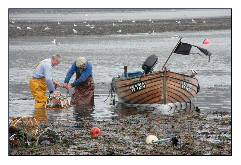 The Lobstermen