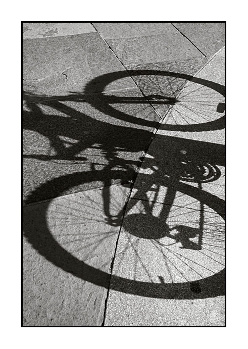 Beyond The Bike The Shadow Of The Bike