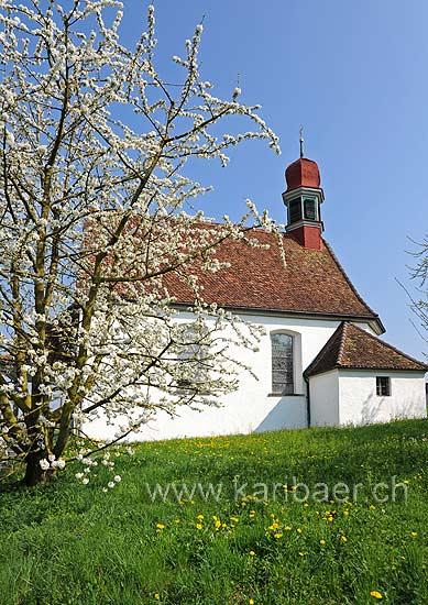 Weinrebenkapelle (93534)