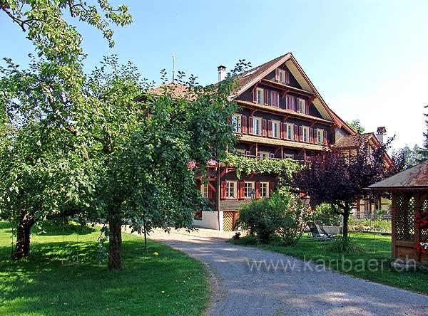 Steinhausen (06159)