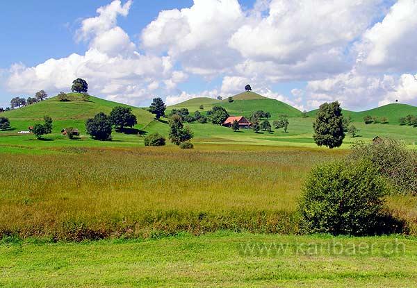 Moraine Landscape (06597)
