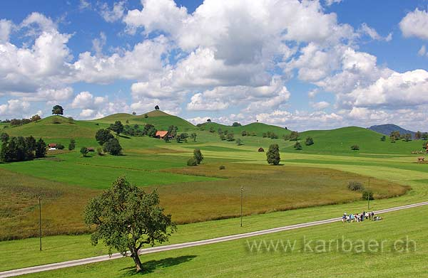 Moraine Landscape (06606)