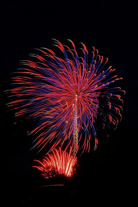 Fireworks 8693
