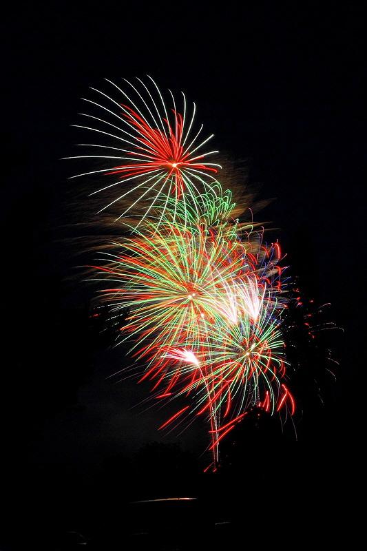 Fireworks 8695