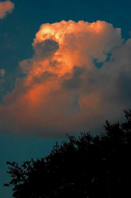 12-2005 Sunset Glow.JPG