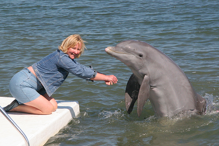 A Lady with a Porpoise