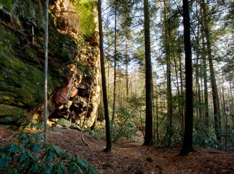 Whittleton Arch Trail