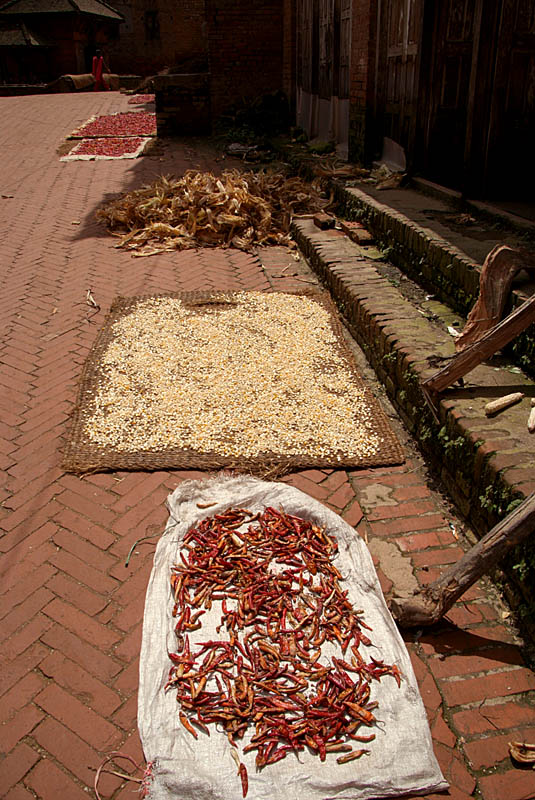 Chilies Drying in Sun Bhaktapur
