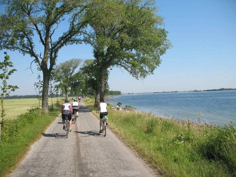 Pro Team Sarcoma and the beautiful Danish countryside.