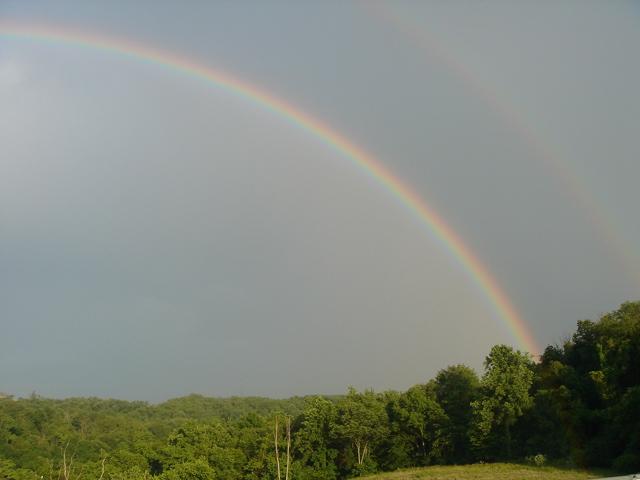 Noras Rainbow