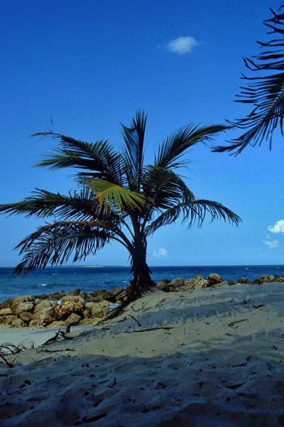 Unnamed beach 70km North of Dar es Salaam, Tanzania