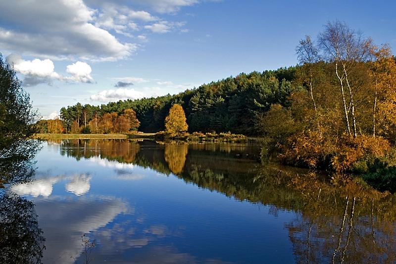 Cannock Chase lake