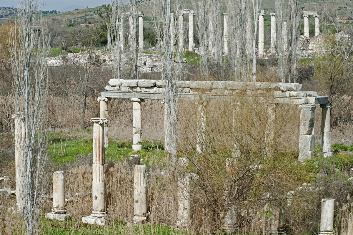 Aphrodisias March 2011 4384.jpg