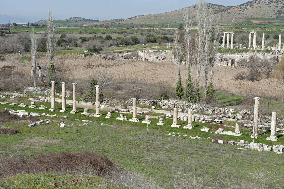 Aphrodisias March 2011 4446.jpg
