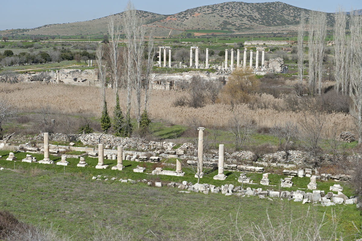 Aphrodisias March 2011 4447.jpg