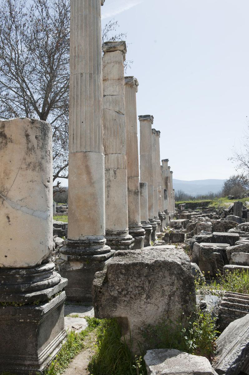 Aphrodisias March 2011 4489.jpg