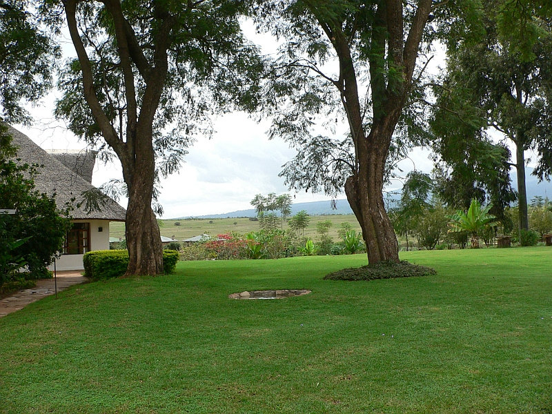 The Ngorongoro Farm House.   A view of the dining pavilion on the left, across the fields to our cottages down below.