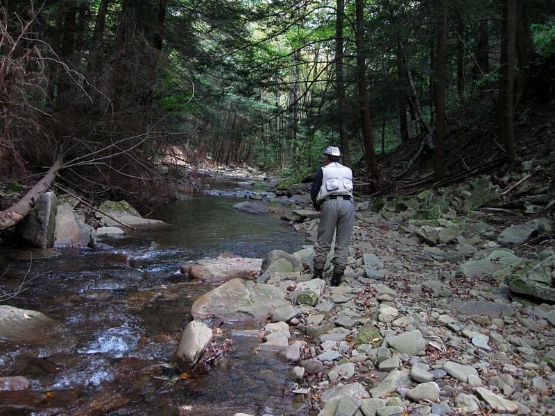 Fishing a Mountain Stream