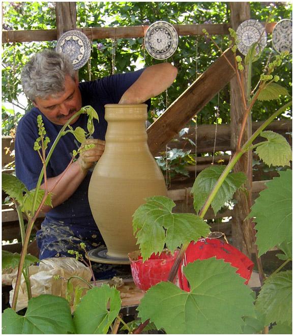 Paul Brians, Hungarian Potter