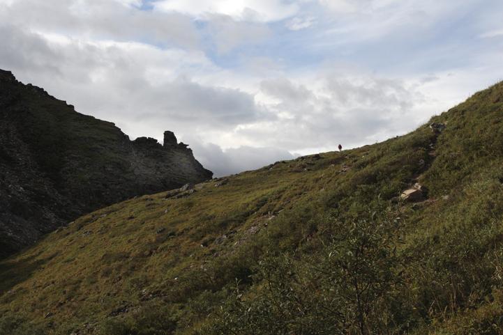 Hiker on the hill.jpg
