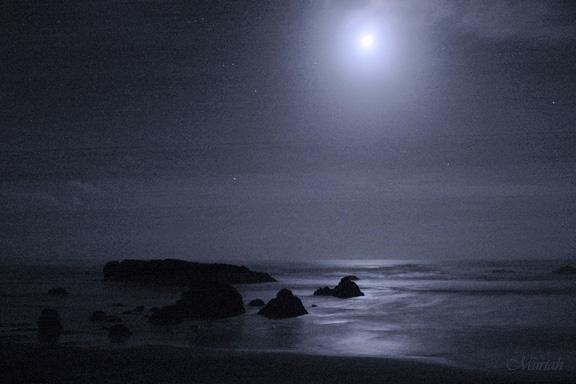 Lunar Light at Cape Cove