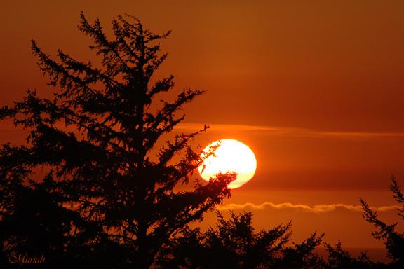 Grannys Sunset (02-21-06)